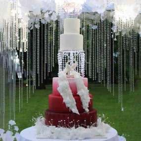 Бело-красный торт райские птицы