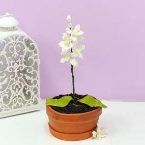 Коричневый торт орхидея в горшке