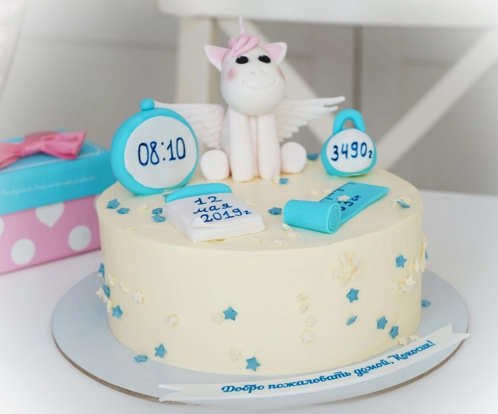 "Торт ""Единорог и метрика"""